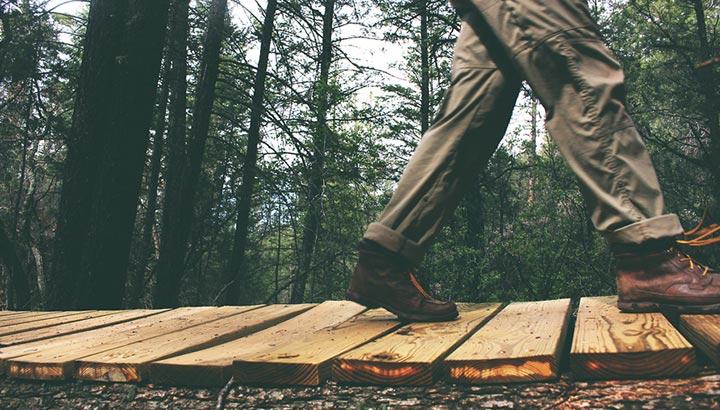 reduce carbon foot prints