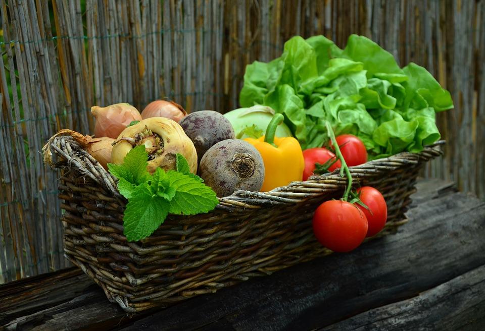 Bio-organic_farming