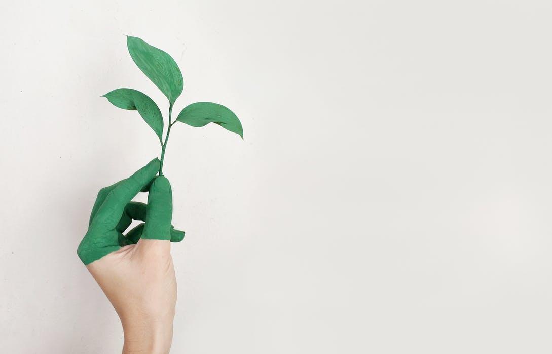 green_living