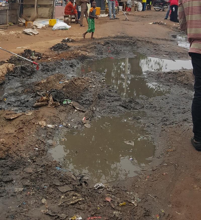 Nigerian and Environmental Degradation