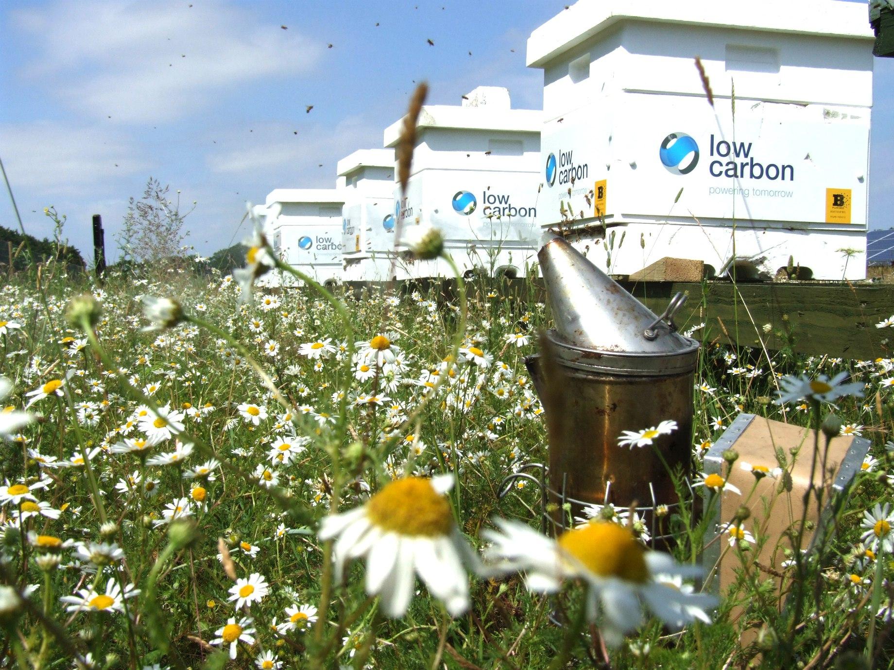 Low-carbon-Hives-2