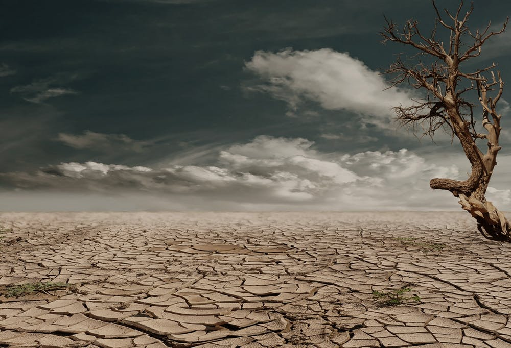 climate_change